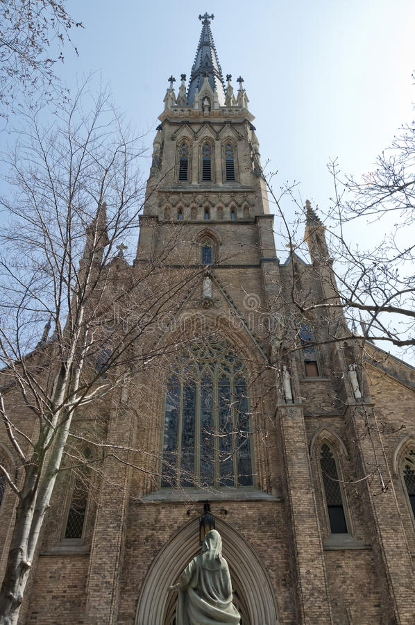St Michael Cathedral a Toronto immagine stock
