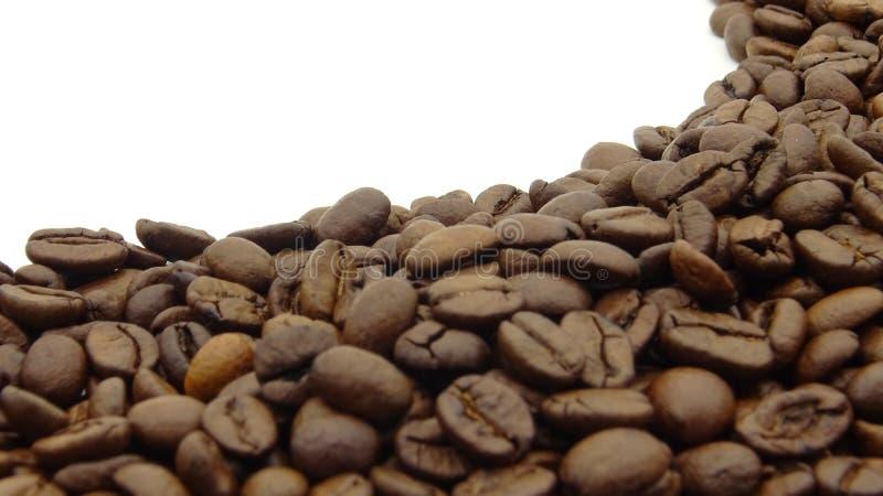 St?ng sig upp av grillade kaffeb?nor p? vit bakgrund arkivfoto
