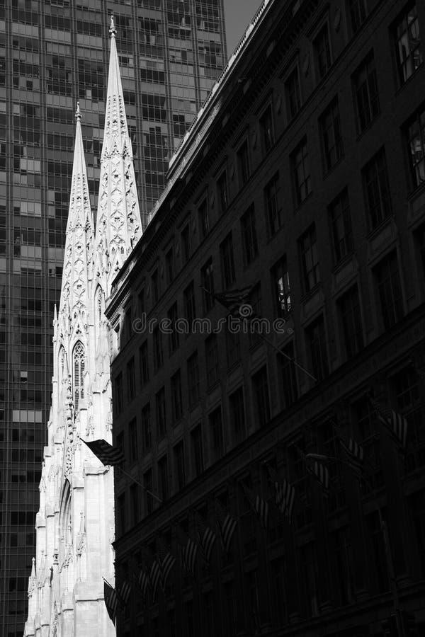 st patrick собора стоковое фото