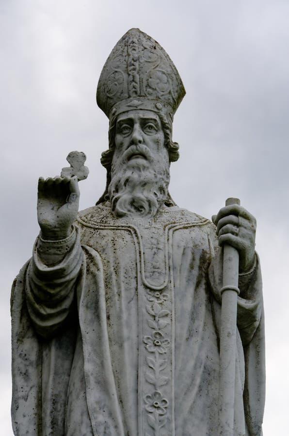 St Patrick fotografering för bildbyråer