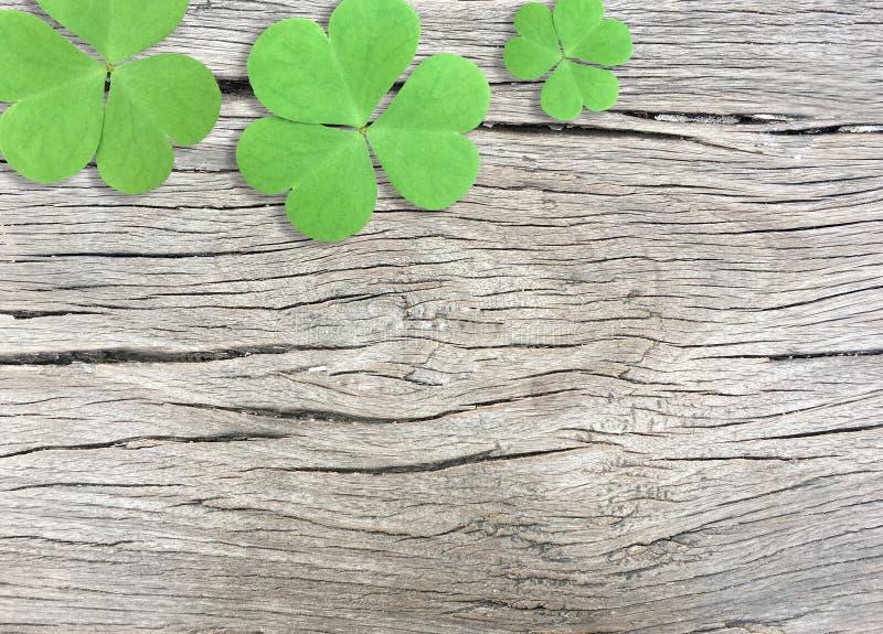 St Patrick Tageshintergrund mit grünen Shamrocks auf hölzerner Beschaffenheit lizenzfreie stockfotos