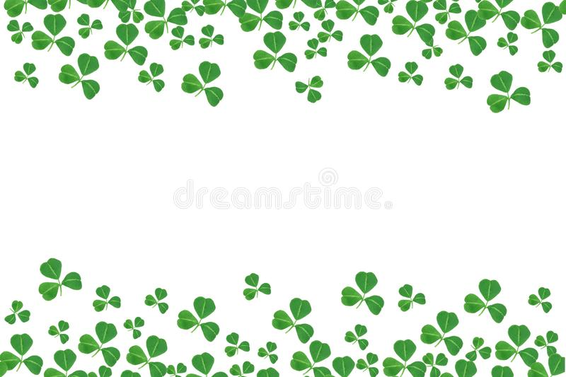 St Patricks天三叶草双边界在白色的 向量例证