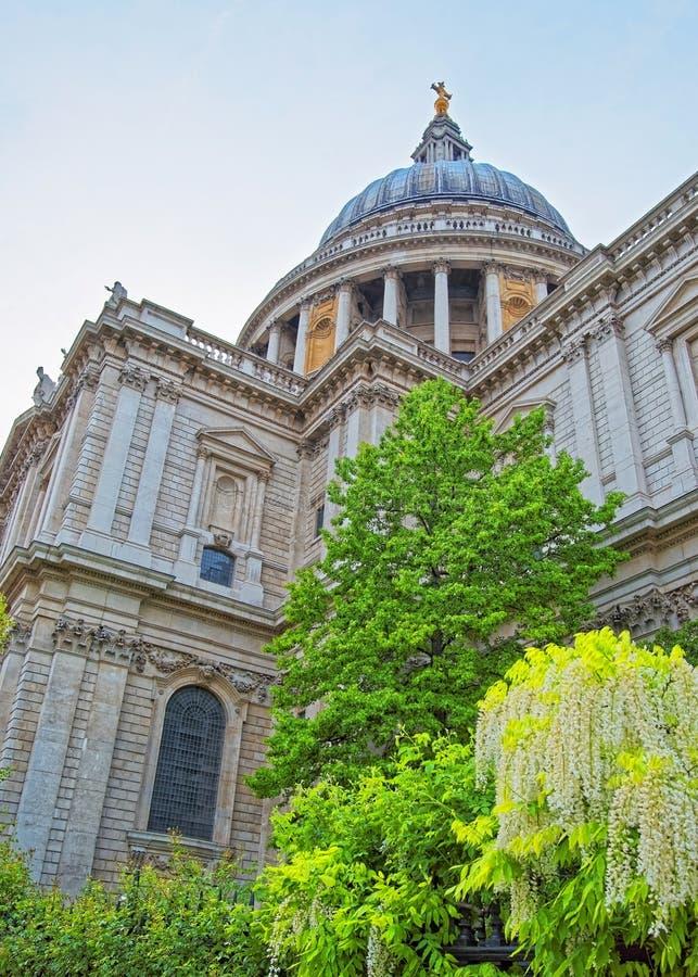 St Paul Cathedral ed alberi verdi a Londra in Inghilterra fotografie stock