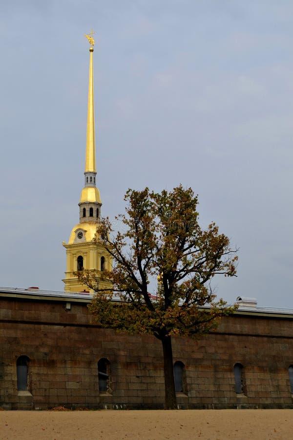 St Petersburg Autunno fotografia stock