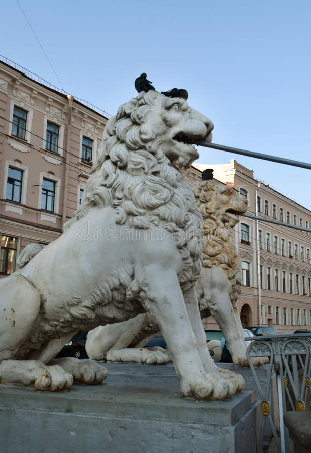 St Petersburg bro som dekoreras med skulpturer av lejon på deras huvud med duvor i St Petersburg royaltyfri fotografi