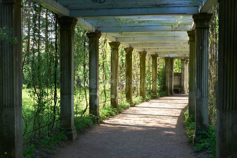 St Petersburg Catherine Park Colonnade fotos de stock royalty free