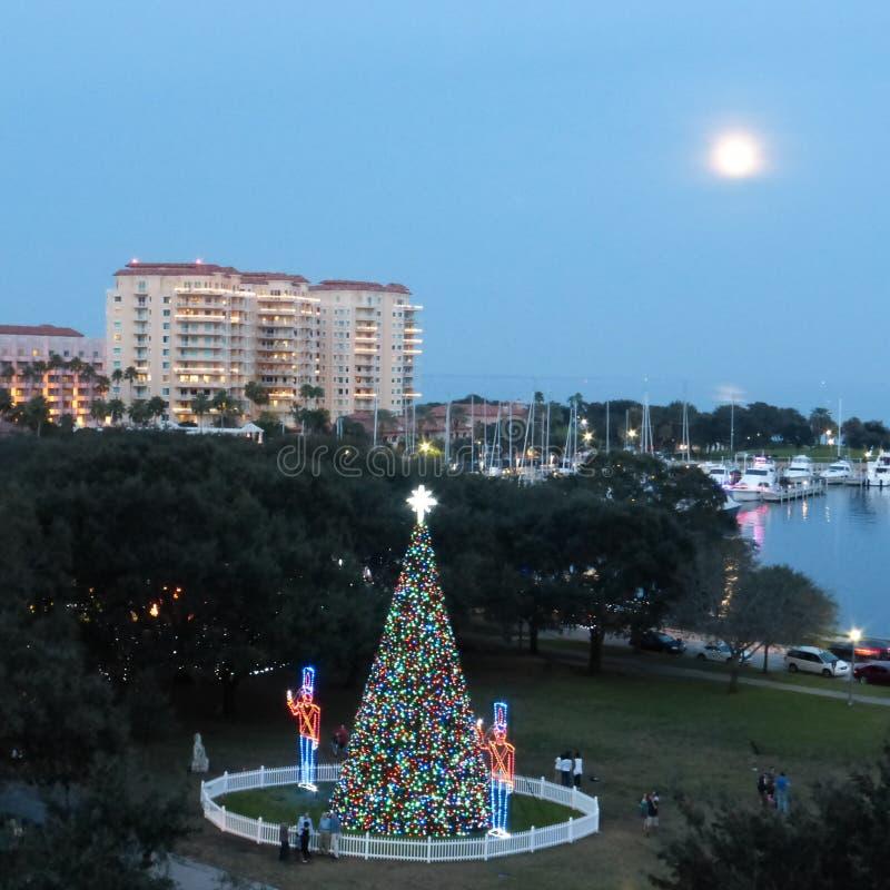 St Petersburg Florida på jul arkivfoton