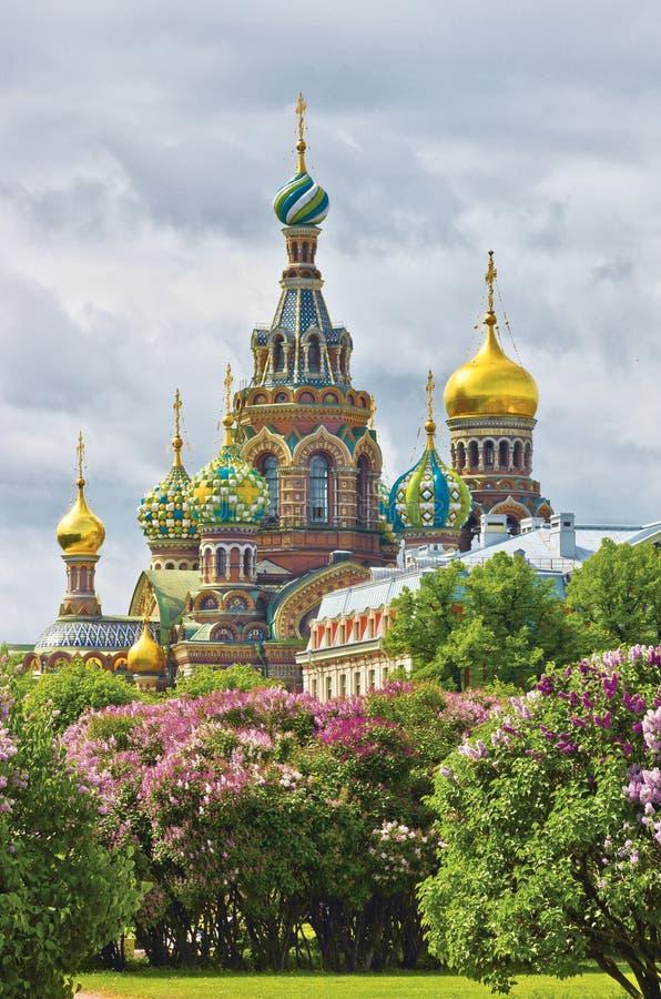 St Petersburg na mola imagens de stock royalty free