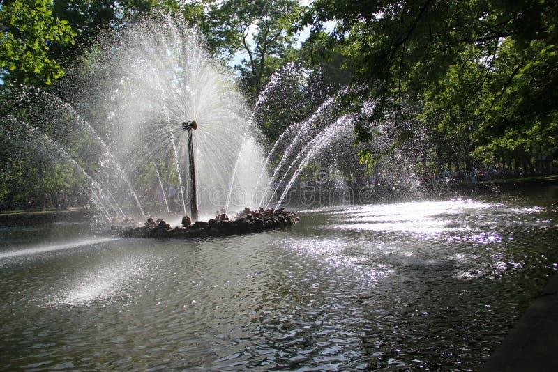 St Petersburg Points de repère 3 Fontaine photo libre de droits