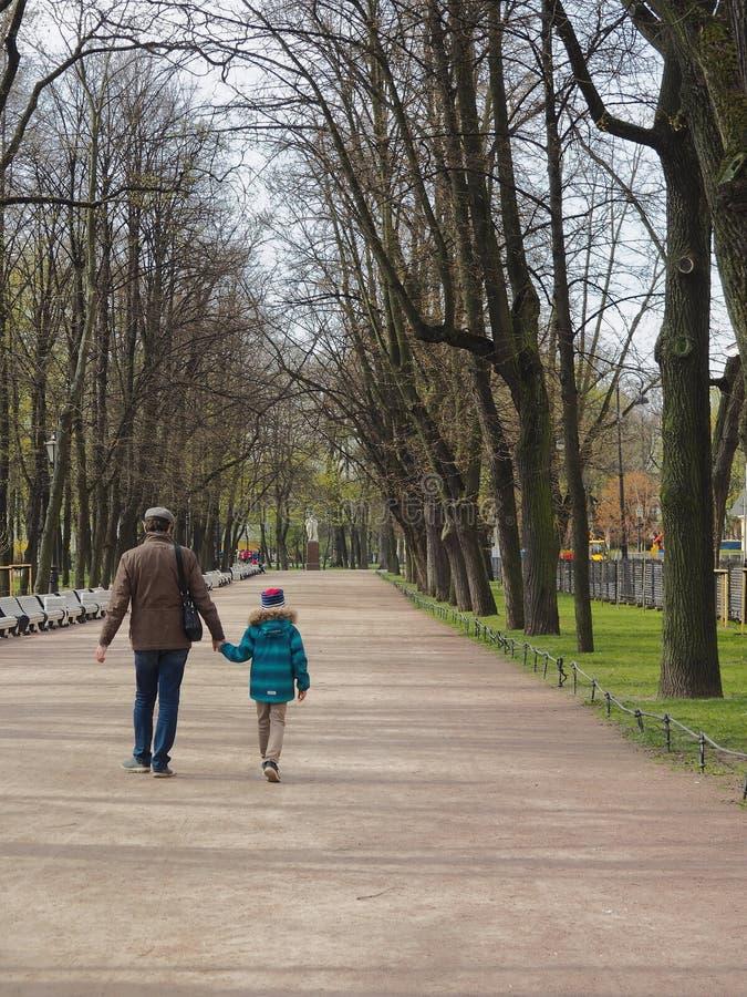 St Petersburg, RÚSSIA – 1º de maio de 2019: Pai e filho que andam ao longo da aleia no jardim de Alexander no dia de mola imagem de stock