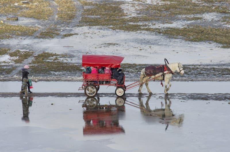 St Petersburg, Rússia - 30 de janeiro de 2016: Na aproximação amigável de janeiro as crianças pequenas montam um cavalo no transp foto de stock royalty free
