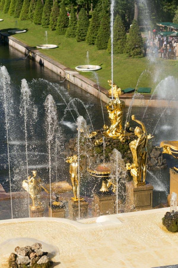 St Petersburg Rosja, Czerwiec, - 28, 2017: kaskada fontanny w Peterhof w St Petersburg Petersburg zdjęcie royalty free