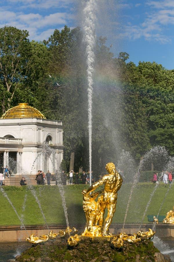 St Petersburg Rosja, Czerwiec, - 28, 2017: kaskada fontanny w Peterhof w St Petersburg Petersburg obraz stock