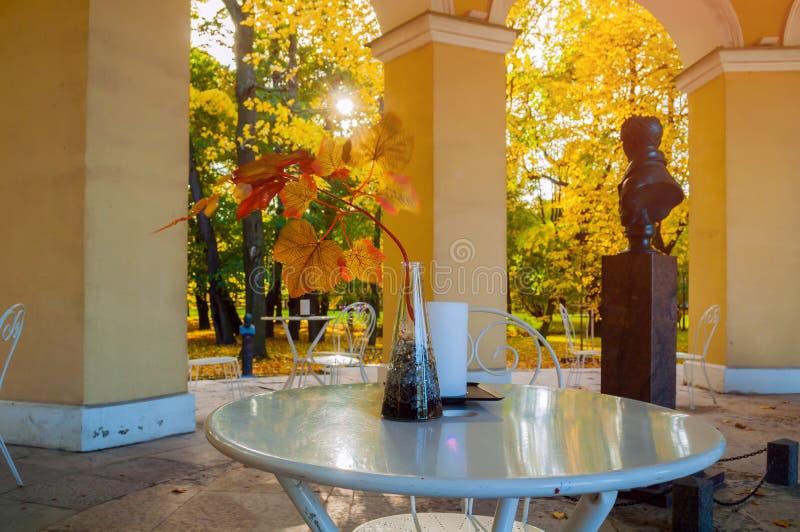 St Petersburg, Rusland Binnenland van Rossi-Paviljoen in de Mikhailovsky-Tuin - paviljoen door Carlo Rossi in 1825 wordt gebouwd  royalty-vrije stock foto