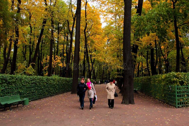 ST PETERSBURG, RUSLAND, 4 Oktober, 2018 De herfst in stadspark Kleurrijke bladeren in zonlicht De sc?ne van de schoonheidsaard bi royalty-vrije stock fotografie