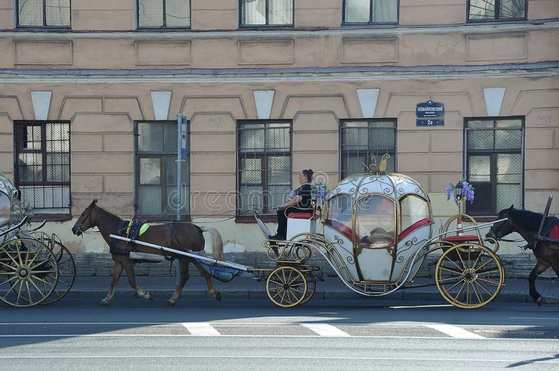 Horse carries a beautiful cart through the streets of St. Petersburg stock photos