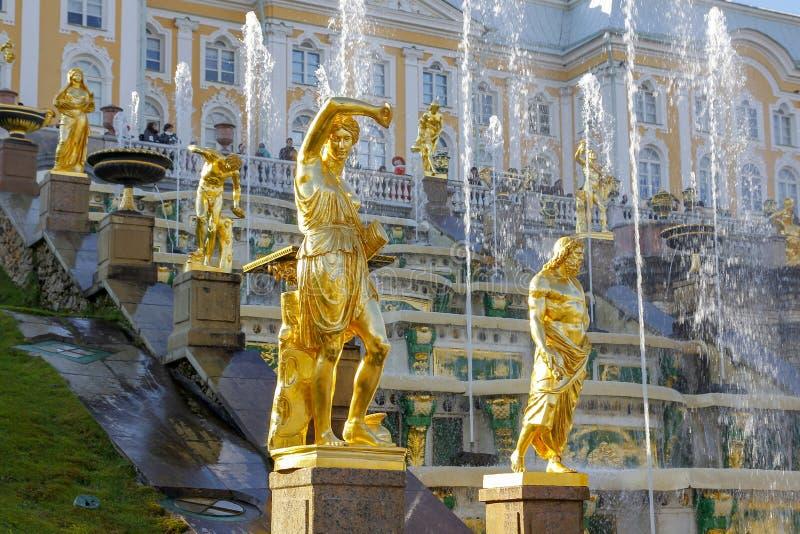 ST PETERSBURG, RUSSIA - 7 ottobre 2014: Grandi fontane della cascata nel palazzo di Peterhof Il palazzo di Peterhof ha incluso ne immagini stock libere da diritti