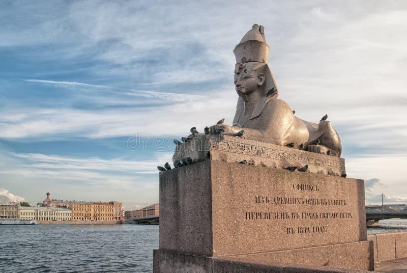 St Petersburg Ryssland Egyptisk forntida sfinx med framsidan av farao Amenhotep III royaltyfria foton