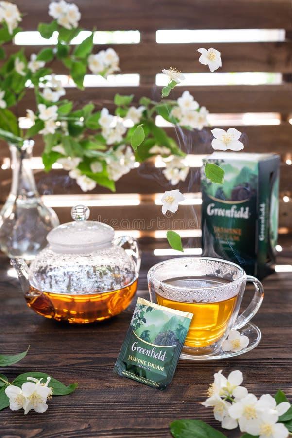St Petersburg RYSSLAND - Juni 2019: grönt te för greenfield med jasmin i genomskinlig kopp med varma ånga- och jasminblommor och royaltyfria foton