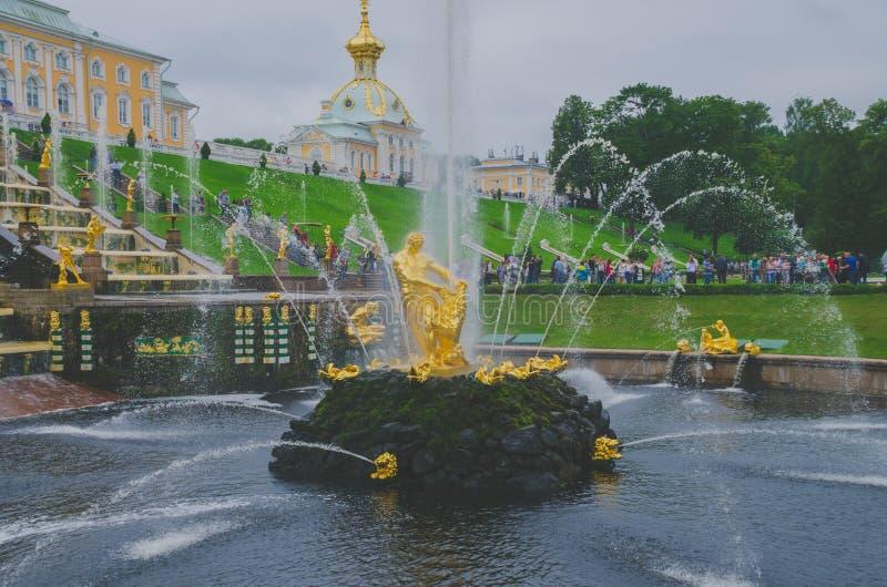 St Petersburg Ryssland - Juni, 2016 - Peterhof springbrunn (den bibliska berättelsen) Samson som river lejonets mun arkivbild