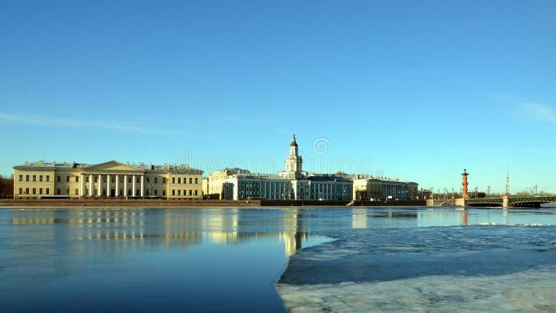 St Petersburg, terraplenagem da universidade imagens de stock