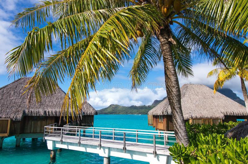 St regis bora bora over water overwater bungalows stock images