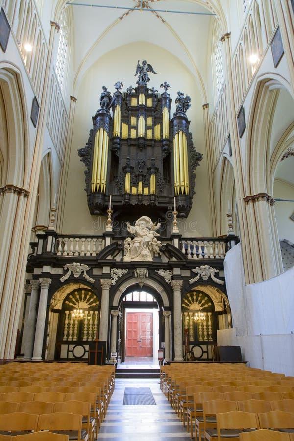 St Salvator katedra w Bruges zdjęcie royalty free