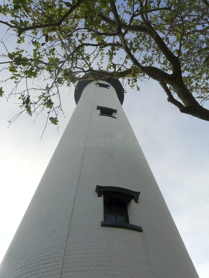 St Simons Georgia Lighthouse dans les arbres photo libre de droits