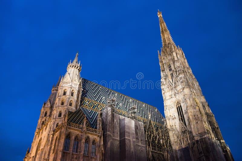 St Stephen Cathedral (Stephansdom) i natten Wien royaltyfria bilder