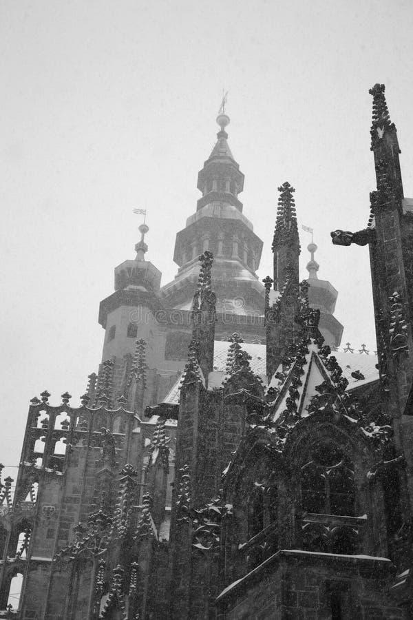 St. Vitus大教堂在冬天 免版税库存图片