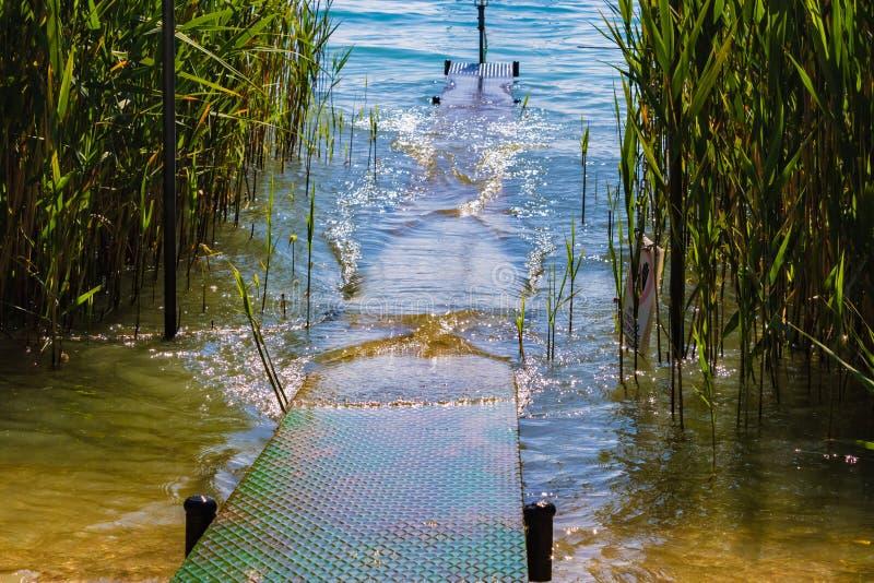 Staal warf met riet en het meer - Beeld stock fotografie
