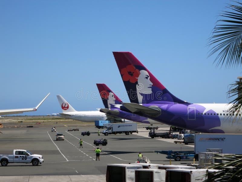 Staarten van de vliegtuigen van Hawaiian Airlines en Japan Airlines-aangezien zij royalty-vrije stock foto