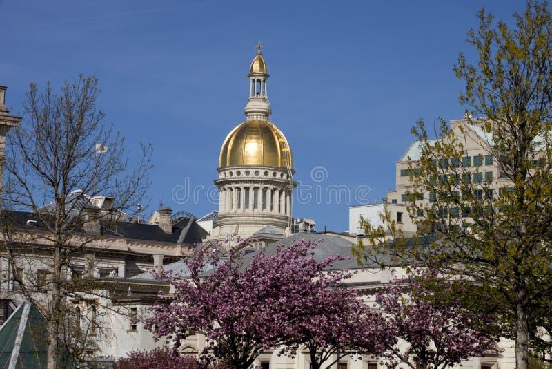 Staat New Jersey-Kapitol in Trenton stockbild