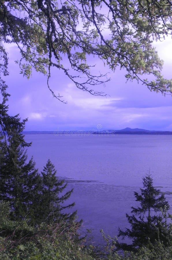Staat Washington gerade von Alaska stockbilder
