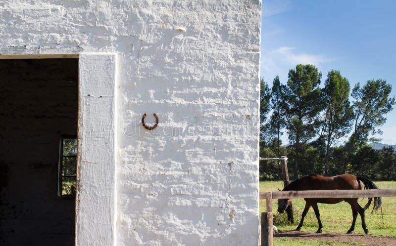 Stabil ingång för häst med hästen i bakgrund arkivbilder