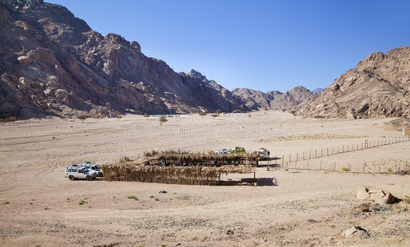 Stabilimento del Bedouin fra le montagne immagine stock libera da diritti