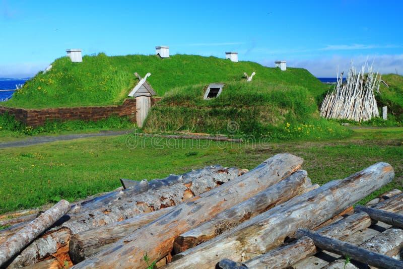 Stabilimento di Viking fotografie stock libere da diritti