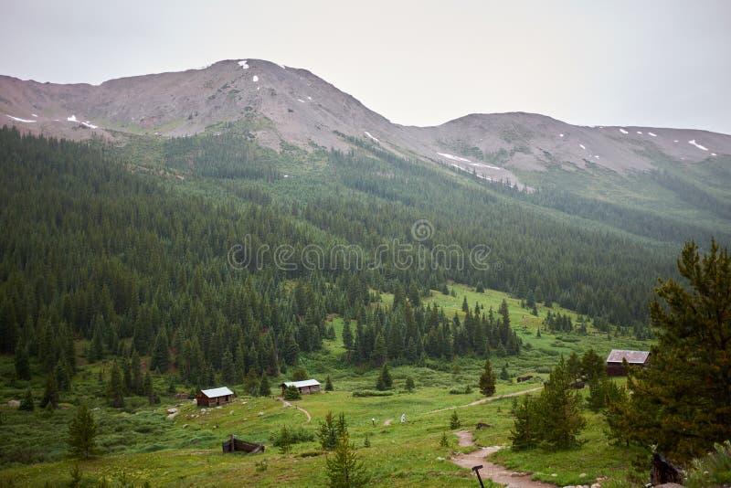 Stabilimento in valle verde della montagna immagini stock libere da diritti