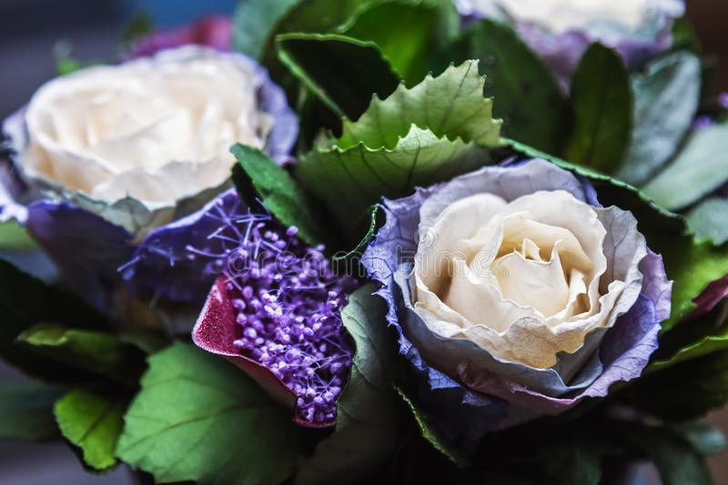 Stabilized rose is a beautiful cream-blue color. Stabilized potted flowers, new technologies stock photos