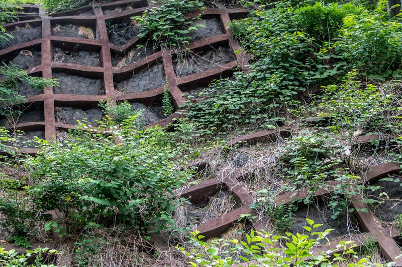 Stabilizing concrete grid in forest over road. Japan royalty free stock photo