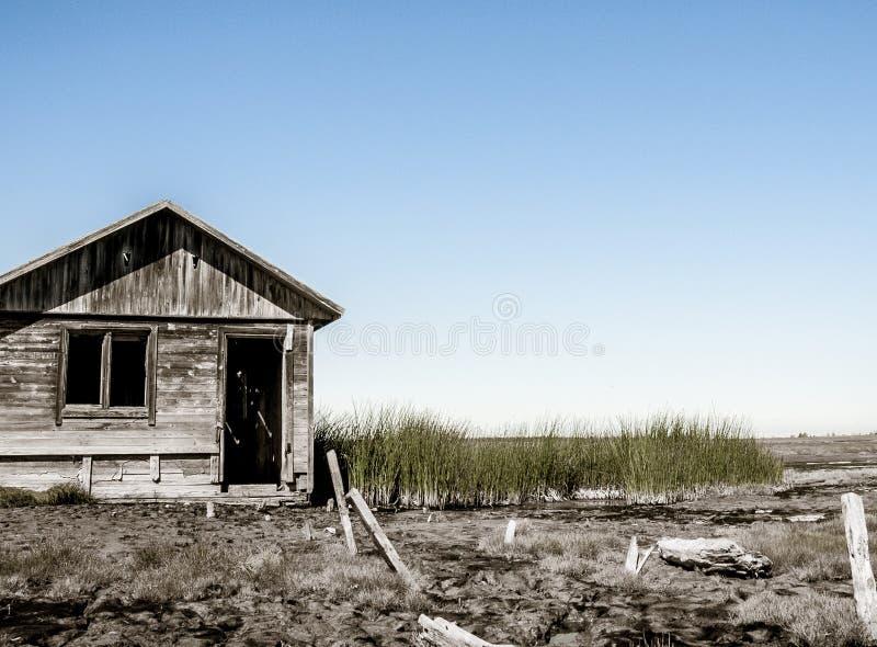 Stabilmento balneare sulla palude fotografia stock libera da diritti