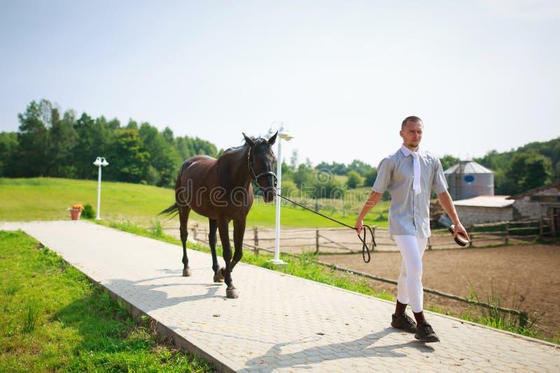 Stableman con el caballo foto de archivo libre de regalías