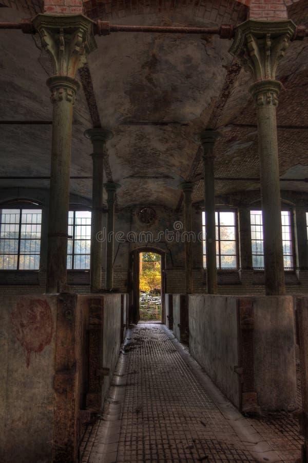Stabulation abandonnée pour des bétail dans l'abattoir allemand Rosenau photo stock