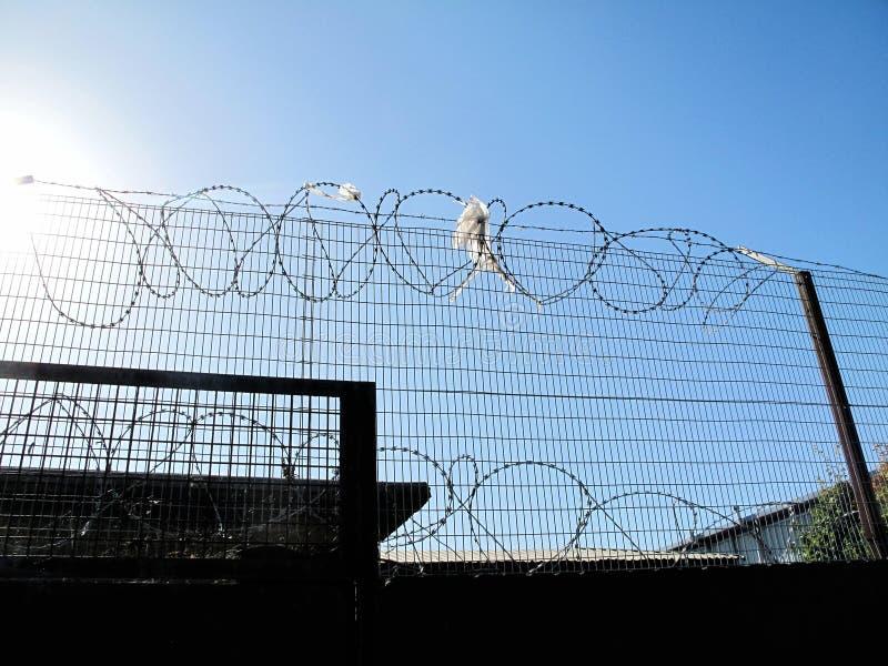 Stachel- u. Rasiermesserdraht-Sicherheitsschutz auf Zaun lizenzfreie stockfotografie