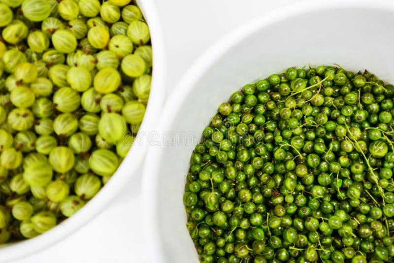 Stachelbeere und grüne Korinthe Vertti breeded in Finnland stockfotos
