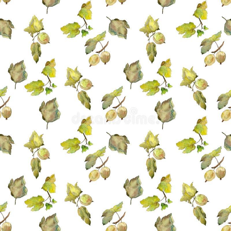 Stachelbeergesunde Nahrung Aquarellhintergrund-Illustrationssatz Nahtloses Hintergrundmuster lizenzfreie abbildung
