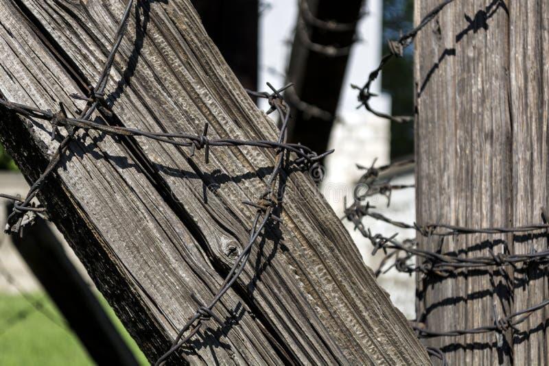 Stacheldraht auf altem Holzbalken lizenzfreie stockfotografie