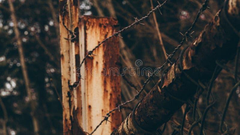 Stacheldraht auf hölzernem Pfosten stockbild