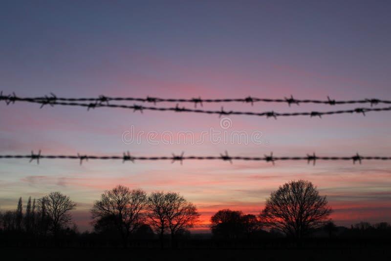 Stacheldraht-Sonnenuntergang-Schattenbild stockfotos