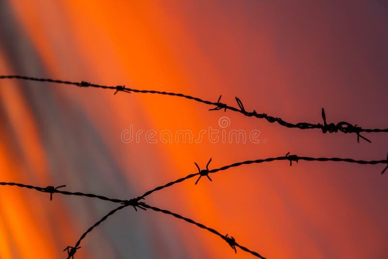 Stacheldraht am Sonnenunterganghintergrund stockfotografie